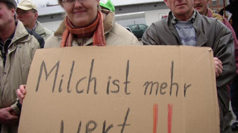 Die Bauern kämpfen für einen fairen Milchpreis, wie hier vor einem Jahr in Nürnberg.