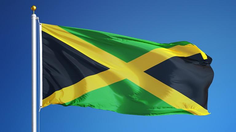 Kommende Woche beginnen die Verhandlungen über eine mögliche Jamaika-Koalition