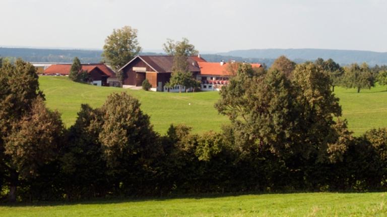 In Bayern gibt es über 100.000 bäuerliche Familienbetriebe. Die Direktzahlungen aus der EU-Agrarpolitik gleichen Mehrkosten aus und sorgen für Stabilität in wirtschaftlich schwierigen Zeiten.