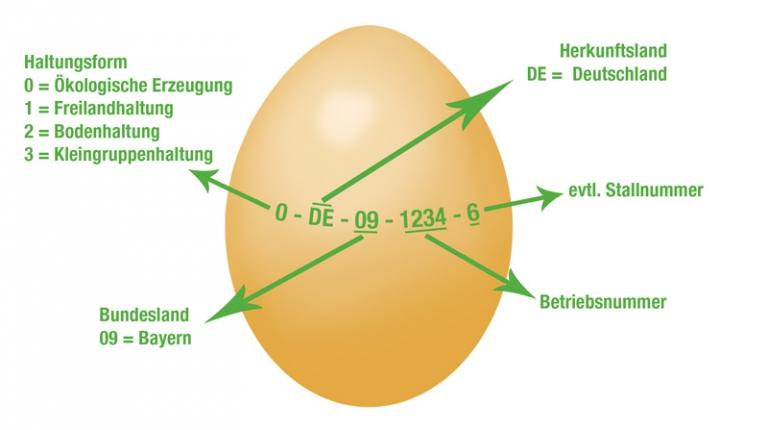 Der Stempel verrät, woher das Ei kommt.