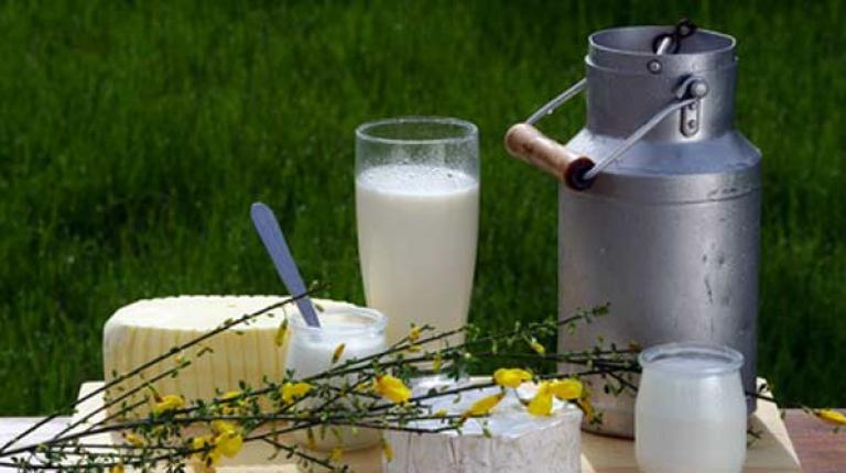 BBV-Milchpräsident Günther Felßner fordert, dass sich höhere Preise durchsetzen sollen!  Der Milchmarkt bietet beste Voraussetzungen für bessere Preisabschlüsse.