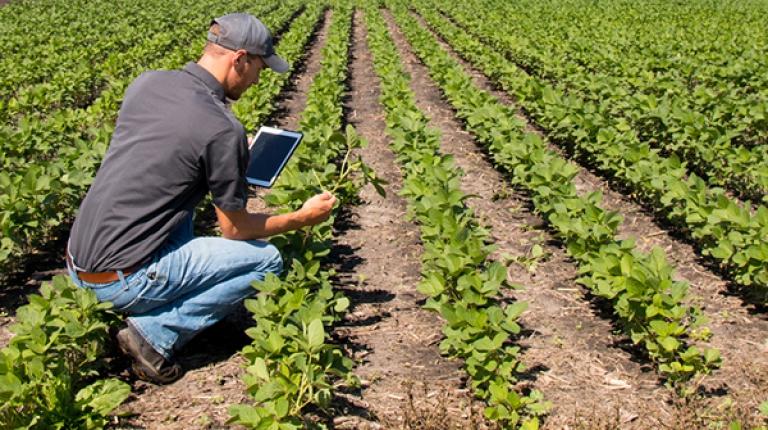 Bei der Digitalisierung müsse der ländliche Raum eine zentrale Rolle spielen, so BBV-Präsident Heidl