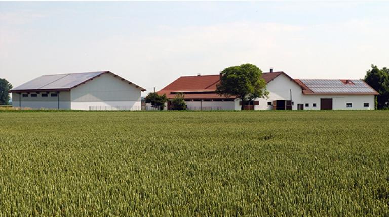 Nach zwei wirtschaftlich schlechten Jahren hat sich die Situation auf bayerischen Bauernhöfen im Wirtschaftsjahr 2016/17 etwas erholt.