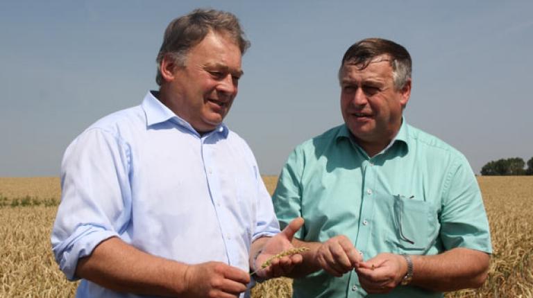 Wie stehts um den Weizen? Landwirtschaftsminister Helmut Brunner und BBV-Präsident Walter Heidl auf der Erntepressefahrt im Landkreis Dachau.