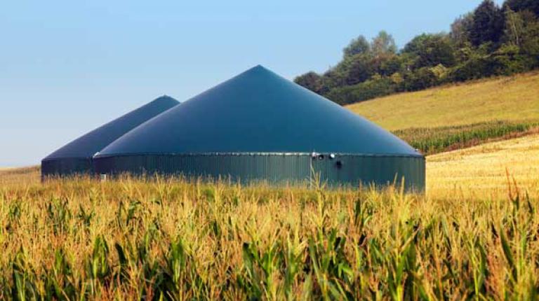 Bioenergie trägt zur Treibhausgaseinsparung im Strom- Wärme- und Kraftstoffbereich bei.