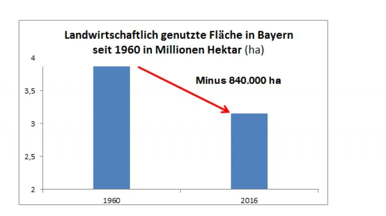 Quelle: Bayerische Agrarberichte und Landesamt für Statistik in Bayern