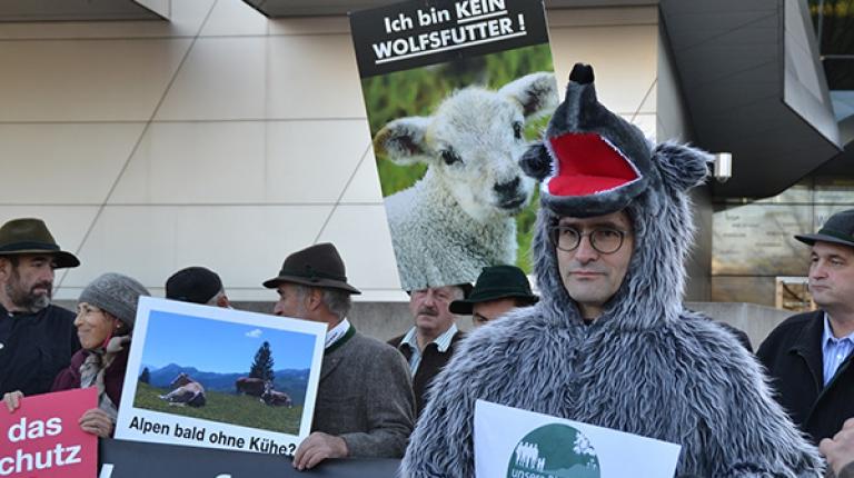 Weidehaltung in den Alpen in Gefahr: Mehr als 100 Demonstranten forderten beim EUSALP-Jahresforum einen wirksamen Schutz vor dem Wolf.
