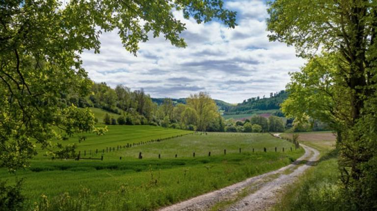 GAP-Reform: Bauernpräsident fordert Nachbesserungen im Sinne der bayerischen Bauernfamilien