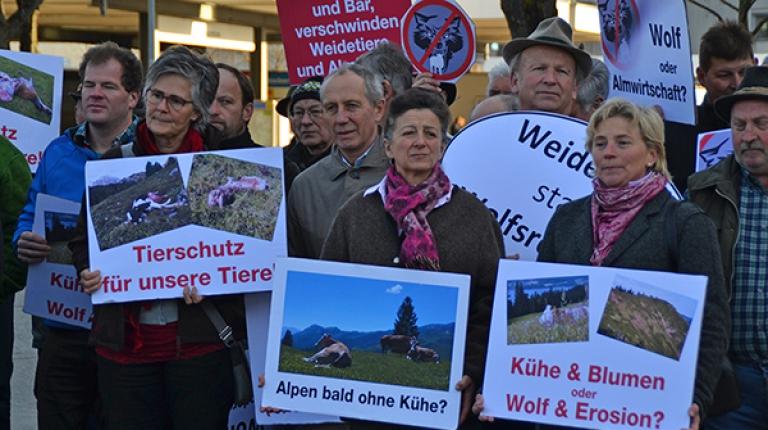 Landwirte fordern stärkeren Schutz vor dem Wolf, wie jüngst bei einer Protestaktion in München im November 2017