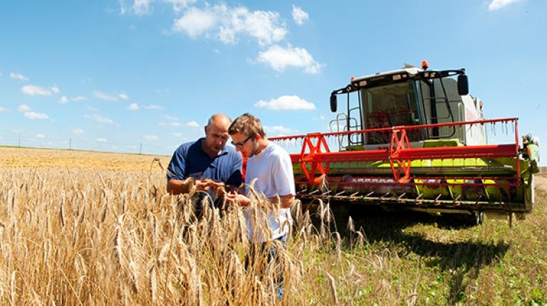 Der Bauernverband bittet Sie um Beteiligung: Wie sieht bei Ihnen die Ernte 2017 aus?