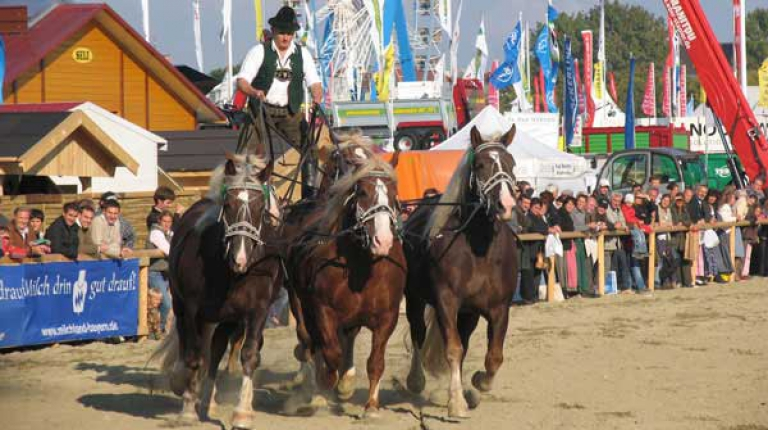 Auf dem Landwirtschaftsfest gibt es 2016 noch mehr Tradition und Brauchtum zu erleben.
