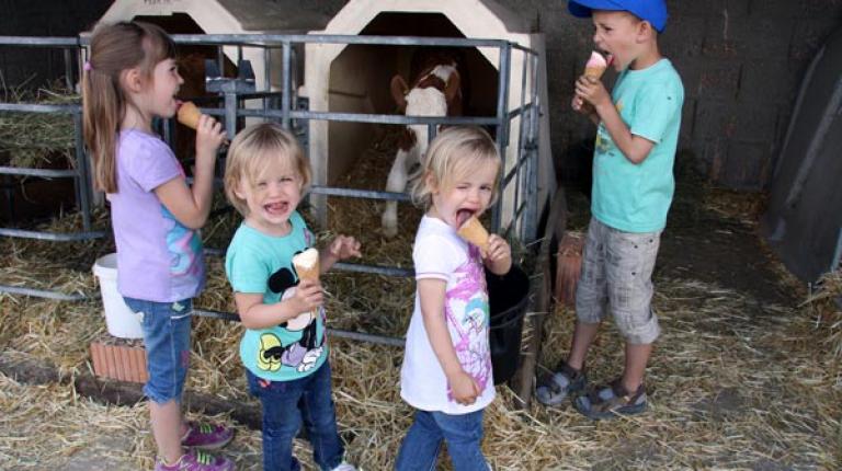 Die kleinen Besucher waren besonders vom Bauernhofeis und den Kälbchen angetan.