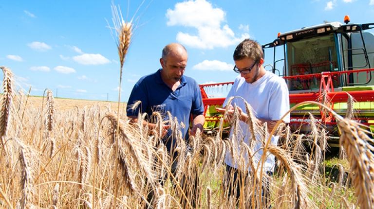 Auf dem zweitägigen Seminar erhalten Nebenerwerbslandwirte aktuelle Informationen zu ihrer landwirtschaftlichen Arbeit