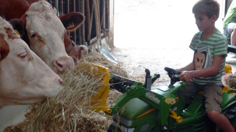 Spannende Erkenntnisse gibt es bei einer Exkursion auf dem Bauernhof.