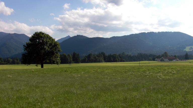 Unsere Heimat ist durch bäuerliche Betriebe geprägt, so der bayerische Bauernpräsident Walter Heidl.