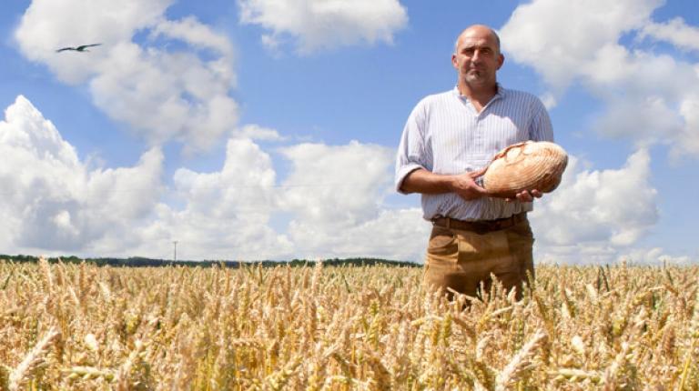 Wer zu den Produkten von bayerischen Bauernhöfen greift, bekommt beste Qualität, die gesichert werden muss.