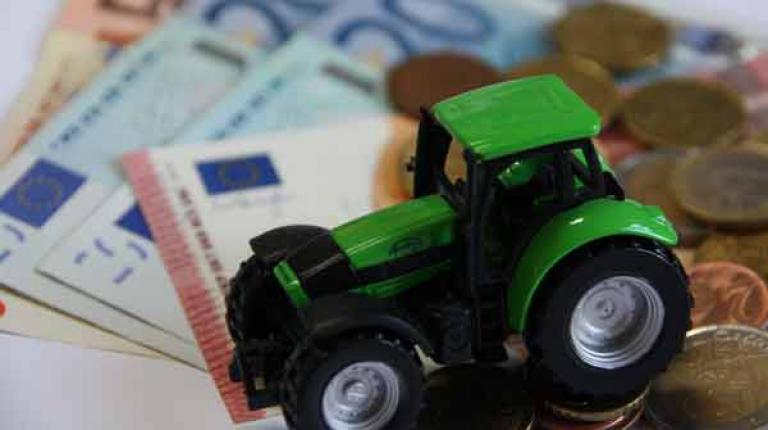 Bauernfamilien haben derzeit mit enormen Herausforderungen zu kämpfen. Bauernpräsident Walter Heidl fordert deshalb alle Bundesländer auf, für Verlässlichkeit bei den Direktzahlungen zu sorgen.