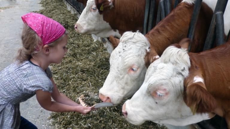 Landwirtschaft hautnah erleben - mit allen Sinnen.