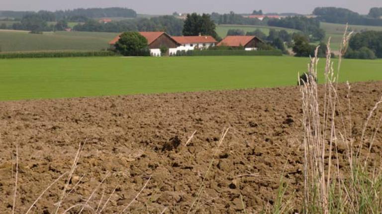 Position des Präsidiums des Bayerischen Bauernverbandes  zur Erbschaft- und Schenkungsteuer.