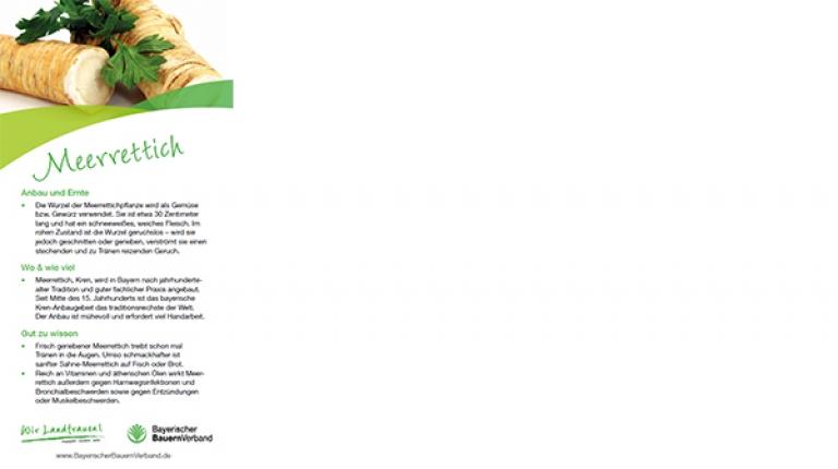 Erntekarte Meerrettich - mit Rezept für Meerrettich-Schaumsüppchen
