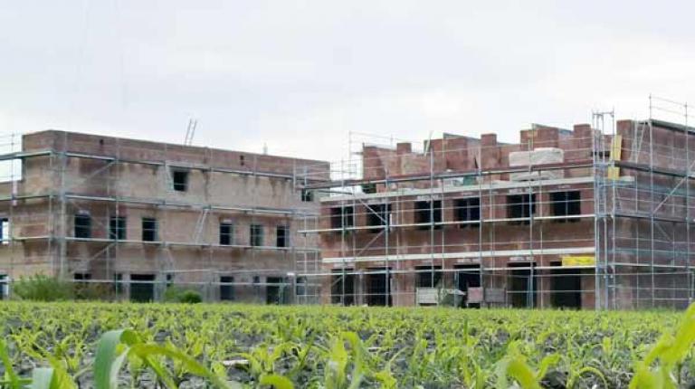 Aus Sicht des Bauernverbandes sollen künftig verpflichtend Ersatzflächen für verbaute Felder und Wiesen geschaffen werden.