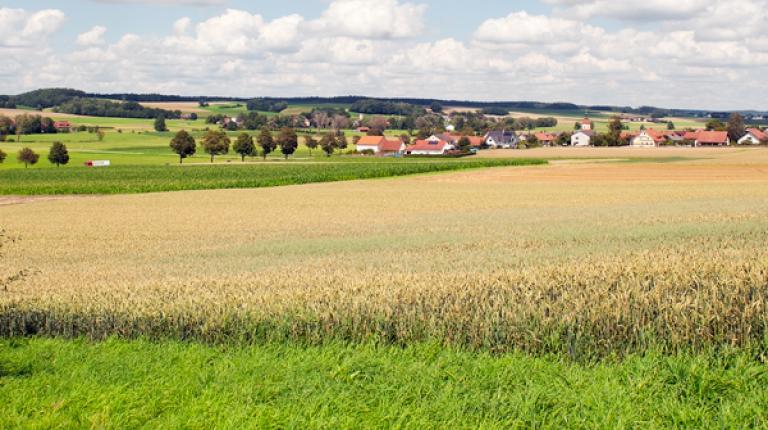 Um das Einkommen und die Eigenständigkeit der bäuerlichen Familien zu sichern, ist auch über 2020 hinaus eine starke EU-Agrarpolitik nötig, so Bauernpräsident Heidl.