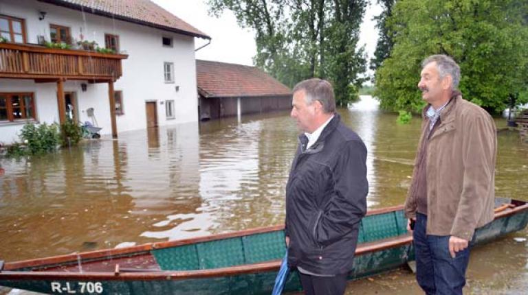 Bilder vom Milchviehbetrieb Josef Gilch in Stephansposching: Präsident Heidl und Bezirkspräsident Stadler machen sich ein Bild von den Auswirkungen des Donau-Hochwassers.