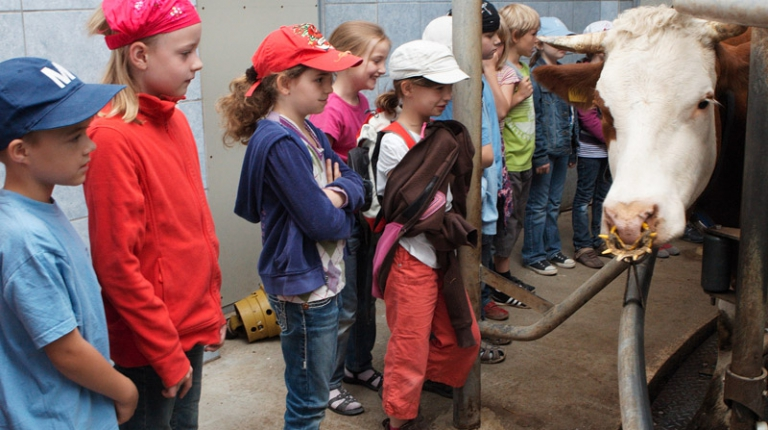 Seit zehn Jahren zeigen die Landfrauen Schülern, wie Bayerns Bauern arbeiten und wo die Lebensmittel herkommen.