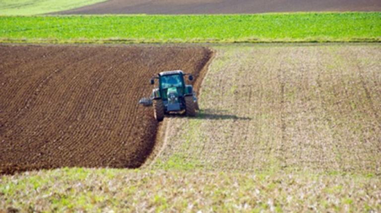 Tiefe Bodenbearbeitung und der Einsatz schwerer Maschinen können durch pfluglose Verfahren zum Teil ersetzt werden