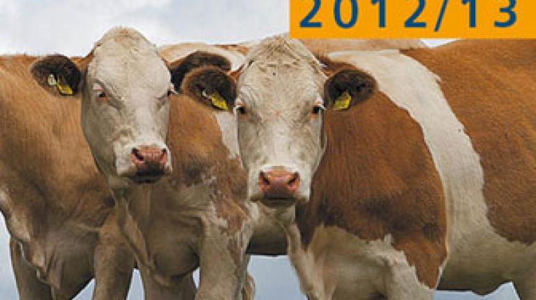 DBV Situationsbericht  2012/13 - Trends und Fakten zur Landwirtschaft